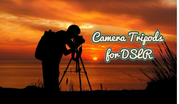 Best Camera Tripods for DSLR